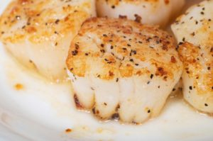New Bedford Seafood Scallops